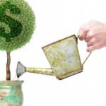 Fondo de Inversión Sustentable